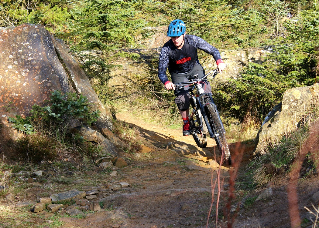 Ginsburg Forest mountain bike trails